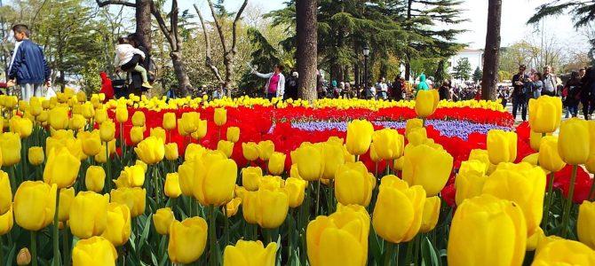 Фестивал на лалето 2020, 30.04.- 3.05.2020 г., четвъртък-неделя,  Цена: 149 лв., Истанбул