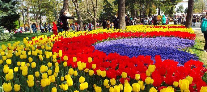 """Та """"Ваканция Роза"""" уведомява своите туристи, че екскурзията до Истанбул и Принцовите острови за дата: 26-29.03.2020 г. ще се проведе на дата: 30.04. – 3.05.2020 г. ,  Бъдете здрави, скъпи приятели!   Фестивал на лалето в Истанбул и на остров Бургазада, 26-29.03.2020 г., четвъртък-неделя, Цена: 149 лв."""